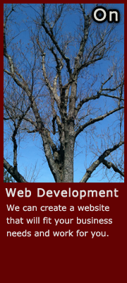 288 Vroom Web Development